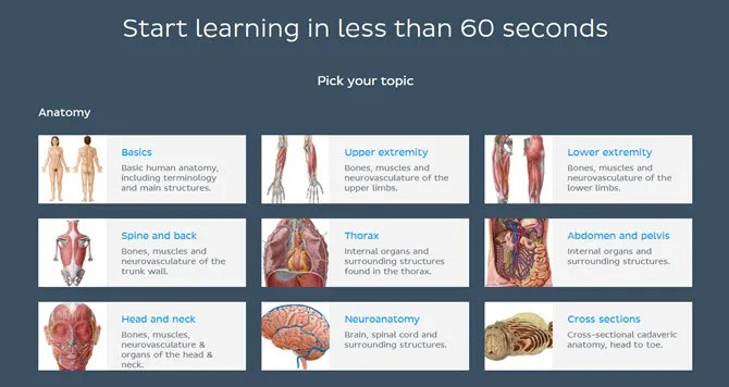 Kenhub сайт обучения анатомии