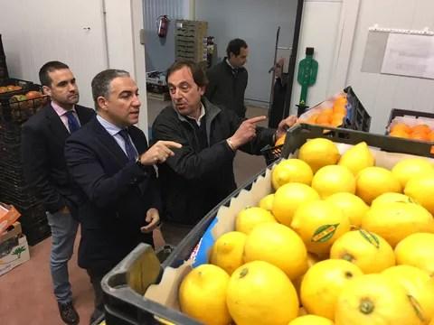Visita a Frutas Adamo