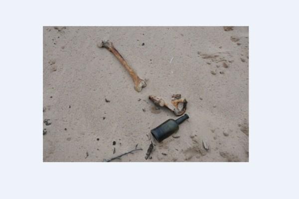 Найденный на пляже гроб с женщиной стал загадкой для ...