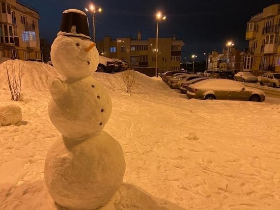 В Тульской области нашли 30 небезопасных зимних горок для ...