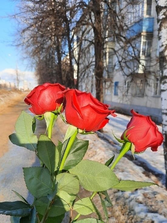 Жительниц Тамбова поздравят с Международным женским днём в ...