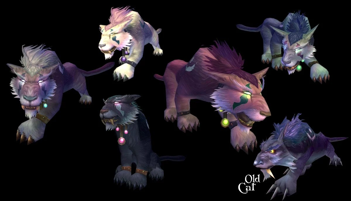 Elf Druid Cat Forms