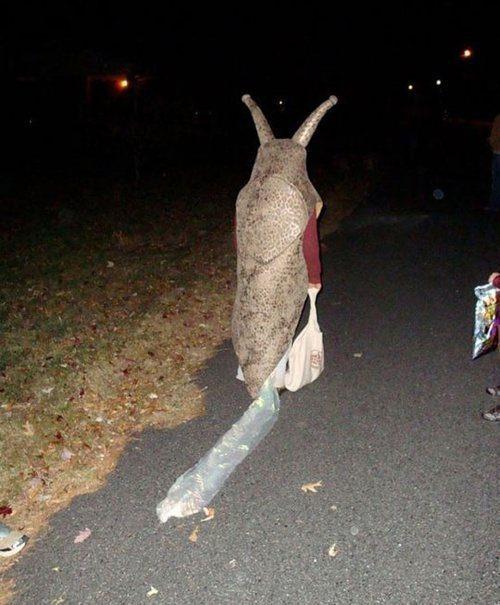 déguisé pour Halloween