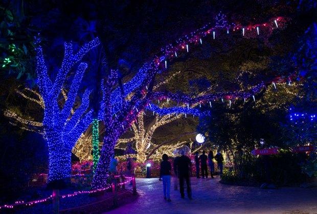 Zoo Lights 2017 Houston