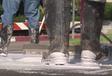 INSOLITE – Lutte contre la chaleur : peindre les routes en blanc #1