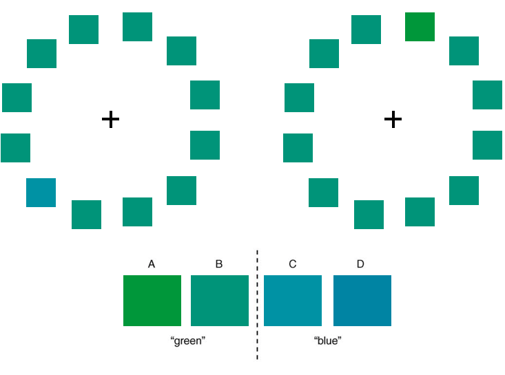 Wald_BR_charts