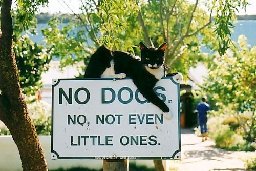 From Neatorama. I'm guessing the sign is in South Africa.