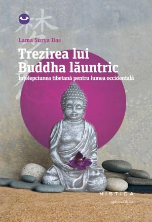 Trezirea lui Buddha launtric