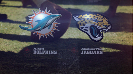 Image result for Jaguars vs. Dolphins