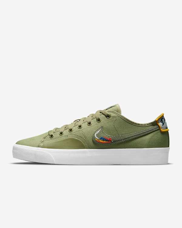 The Nike SB BLZR Court DVDL