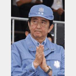 1日、総合防災訓練での安倍首相(C)日刊ゲンダイ