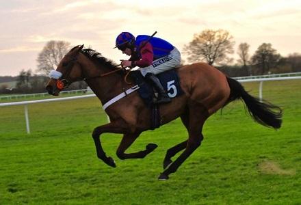 Image result for la bague au roi horse