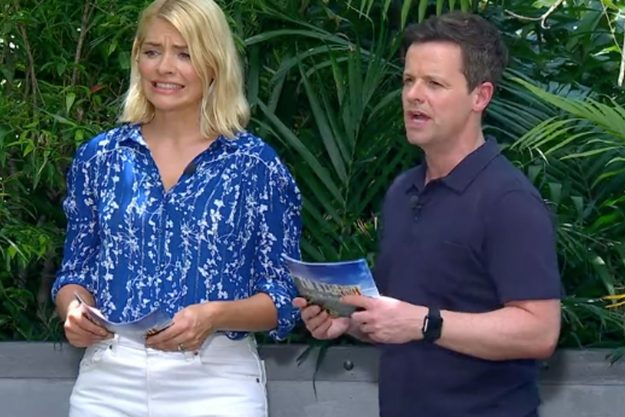 I'm a celebrity that Holly Willoughby and Dec Donnelly struggle to watch