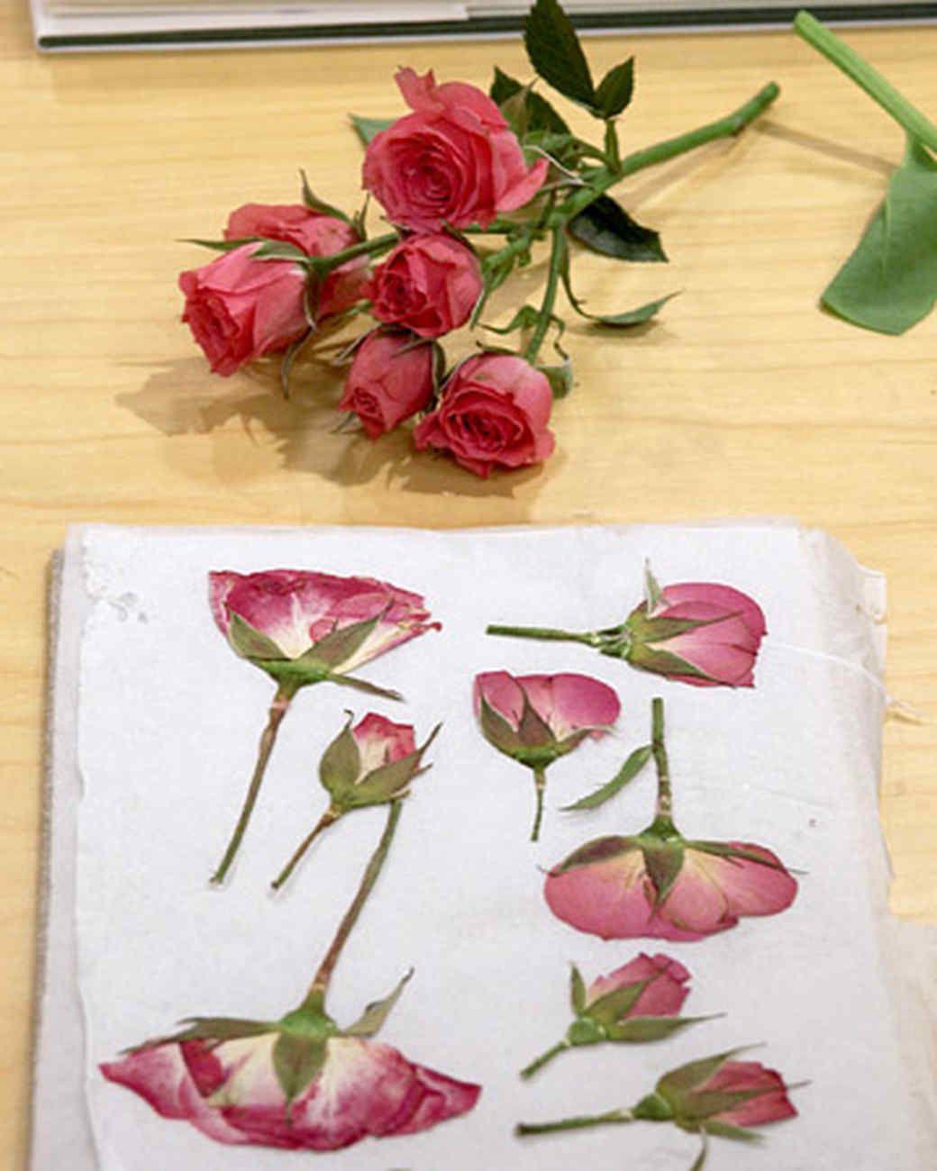 pressing flowers with janie martha
