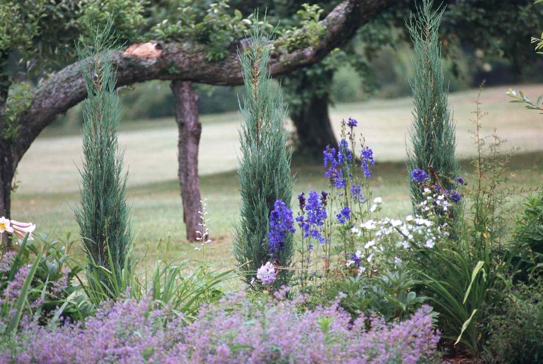 Easy Landscaping Ideas | Better Homes & Gardens on Easy Back Garden Ideas id=58989