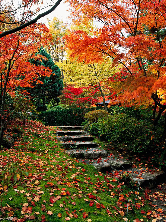 Hillside Landscaping Ideas | Better Homes & Gardens on Backyard Hill Landscaping Ideas  id=99835