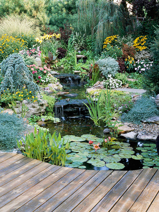 Water Garden Landscaping Ideas | Better Homes & Gardens on Pond Ideas Backyard id=96569