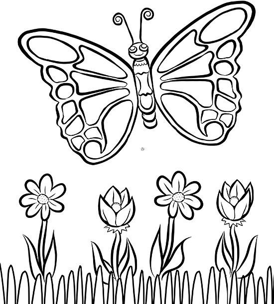 free printable butterfly coloring pages # 1