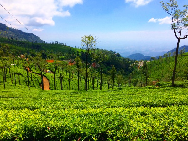 Most-Visited Hill Stations In India In 2017 - Nativeplanet