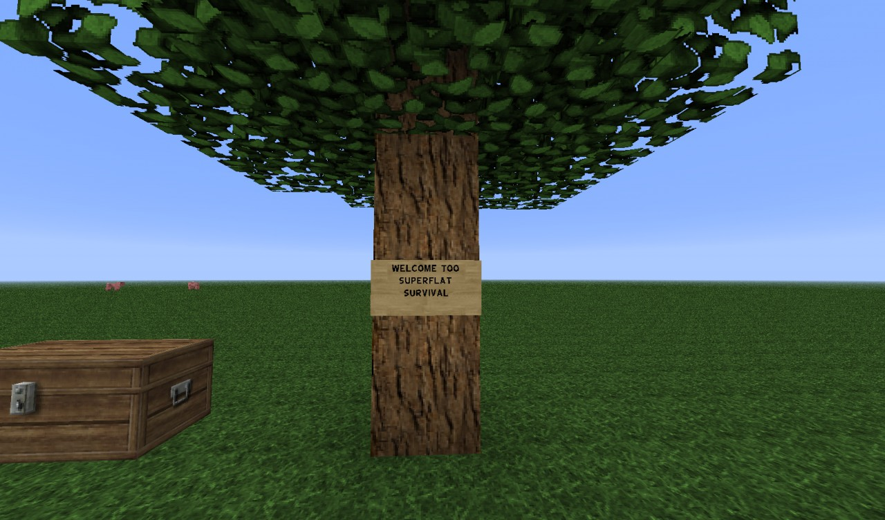 Servers Played Minecraft Most