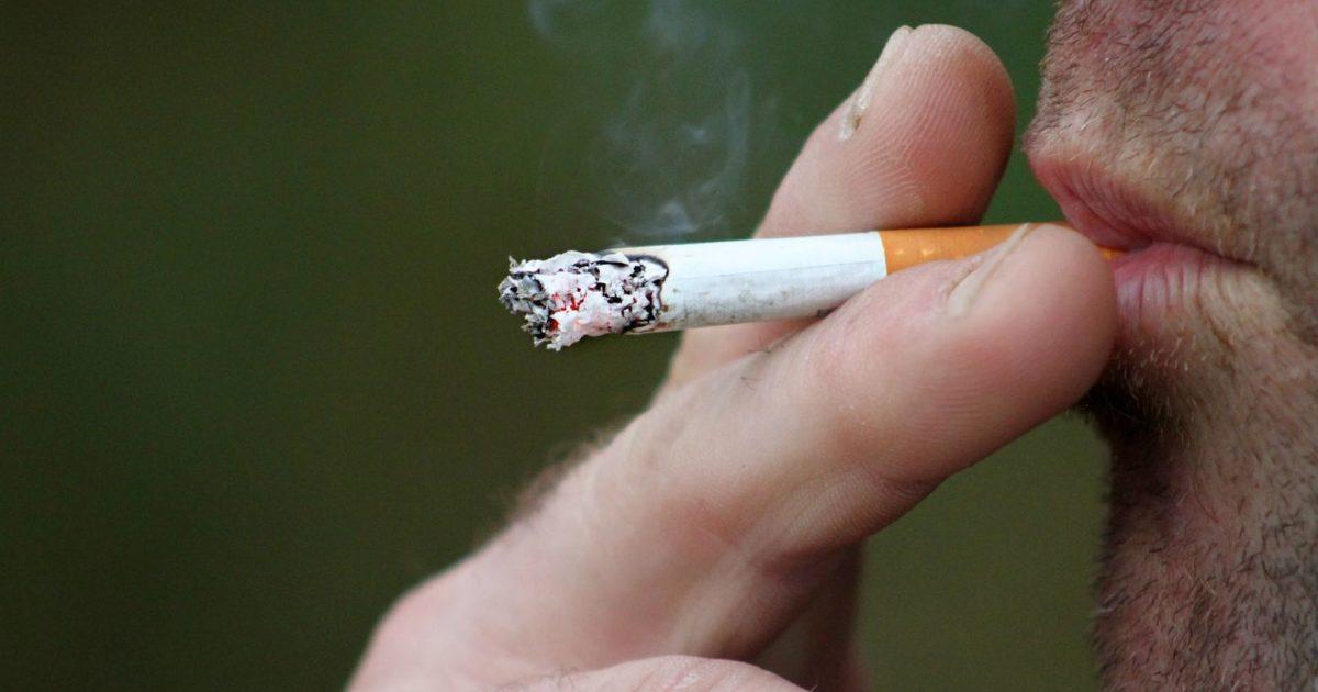 Brasil exporta 549 mil toneladas de tabaco e movimenta US$ 2,14 bi em 2019