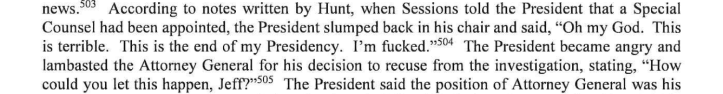 Section of the Mueller Report