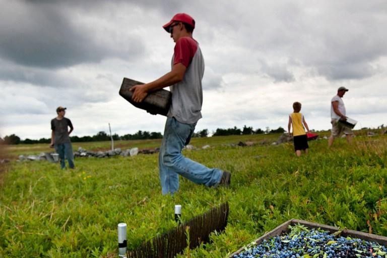 The transatlantic relationship descends into a food fight – POLITICO
