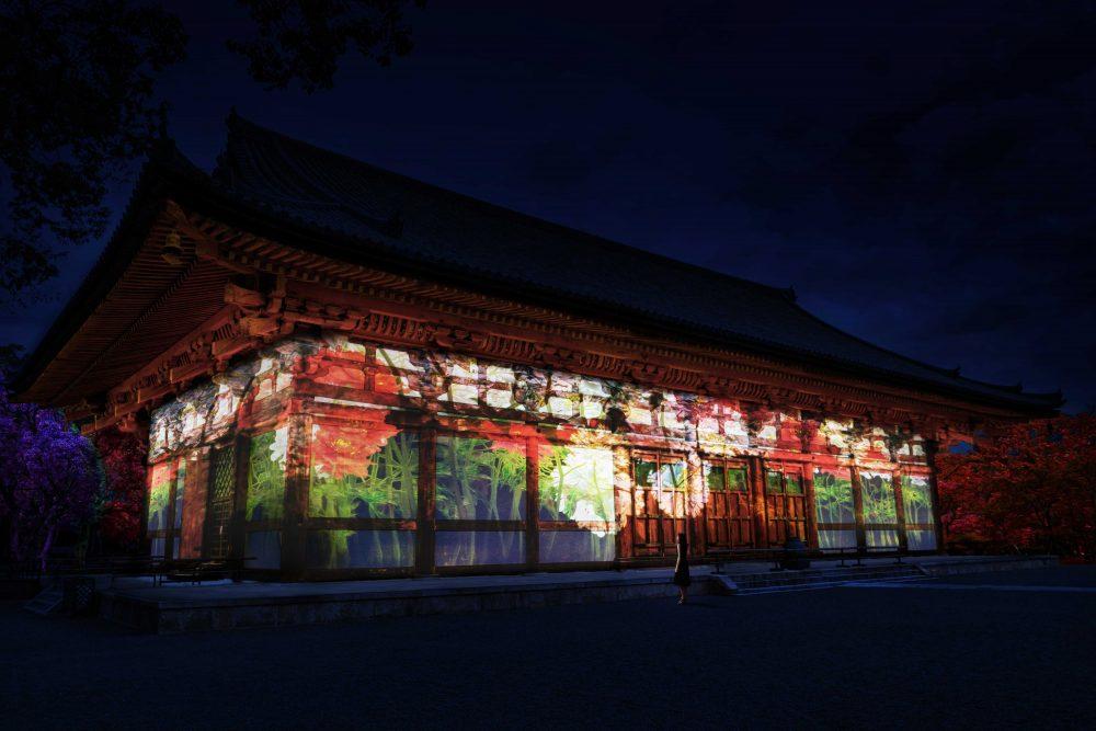 teamLab東寺:光之祭