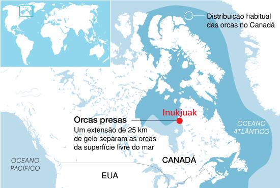 Onde estão as orcas