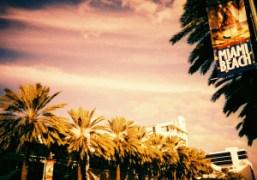 Sunny Miami. Photo Jessie Askinazi