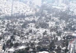 A beautiful view of Tokyo under the snow. Photo Chikashi Suzuki