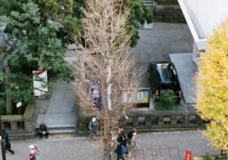 The special ward of Meguro, Tokyo