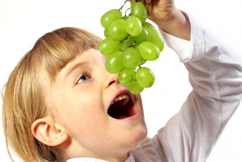 Hasil gambar untuk Anak Suka Makan Buah Segar