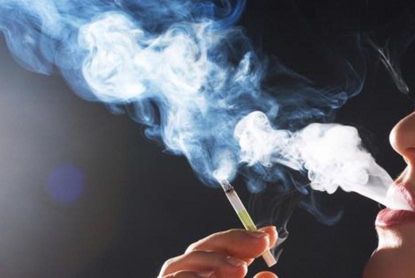 Image result for asap rokok