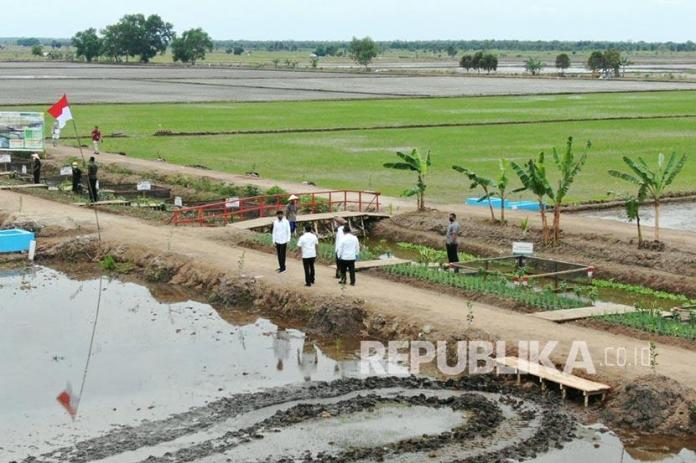 Kementan Food Estate Bakal Dibangun Di Seluruh Indonesia Republika Online