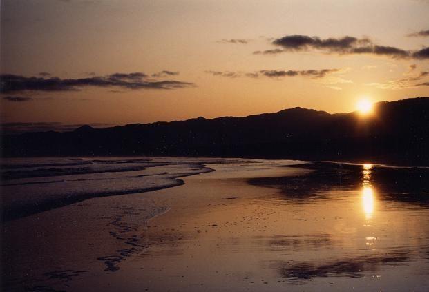白浜青松の砂浜が続くスポットとして親しまれている。