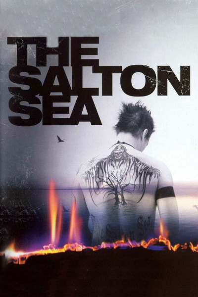 The Salton Sea Movie Review Amp Film Summary 2002 Roger