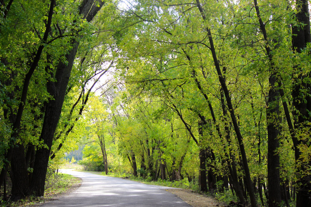 There are some excellent trails to discover at Fort Snelling State Park.