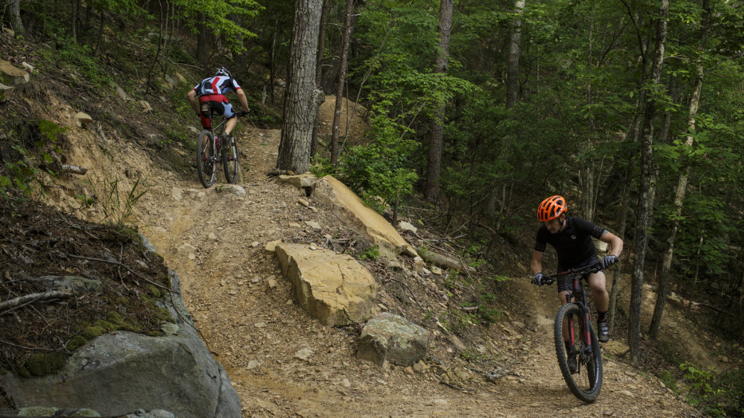 Check for ratings on facilities, restrooms, and appeal. Raccoon Mountain Mountain Biking