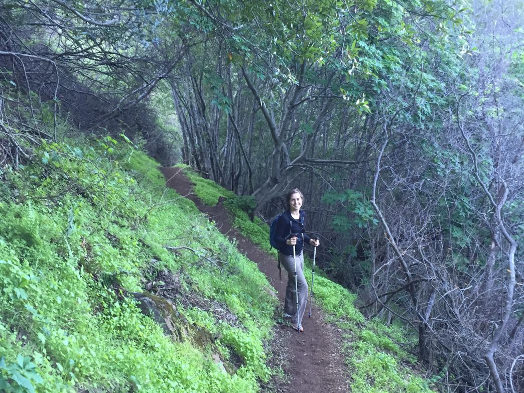 As you climb to the summit, you'll. Mount Diablo State Park Hiking