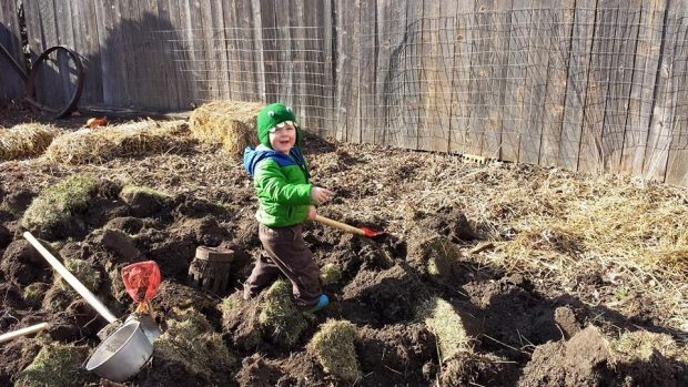 A toddler in a green jacket stands amid clumps of dirt in the garden.