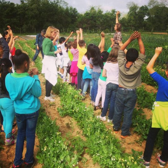 A number of children stand in a field and raise their hands to answer a question.
