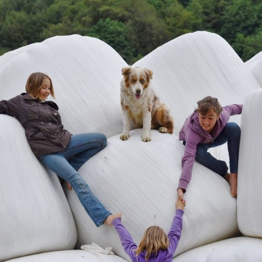 Two Mahaffy sisters help the third sister climb up the hay bales while the family's farm dog looks on from above.