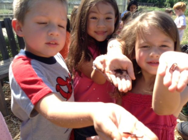 Young children hold worms in their hand and show them to the camera.