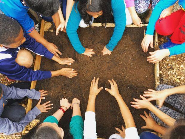 Children get their hands in the dirt during a Zenger Farm field trip.
