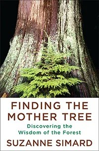 Finding the Mother Tree book cover.