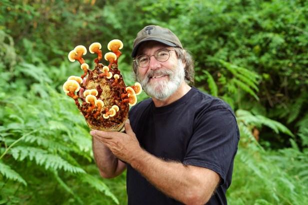 Future Space Travel Might Require Mushrooms
