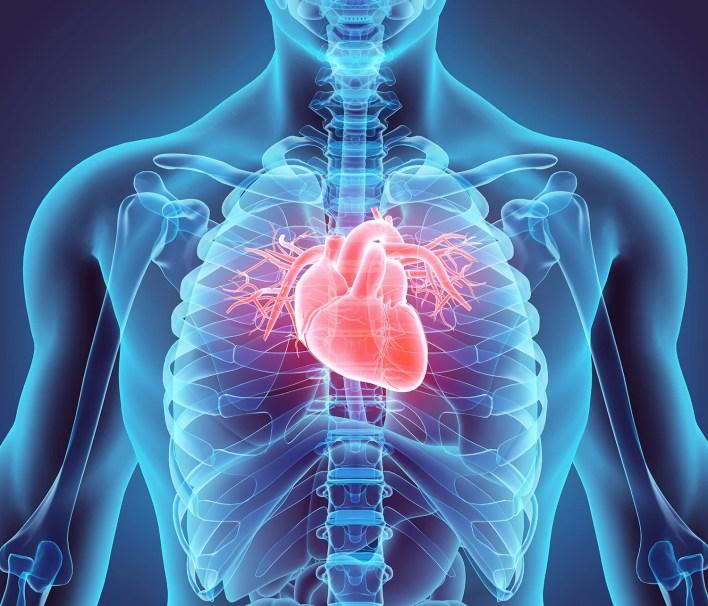 heart damage in covid-19 patients puzzles doctors - scientific american