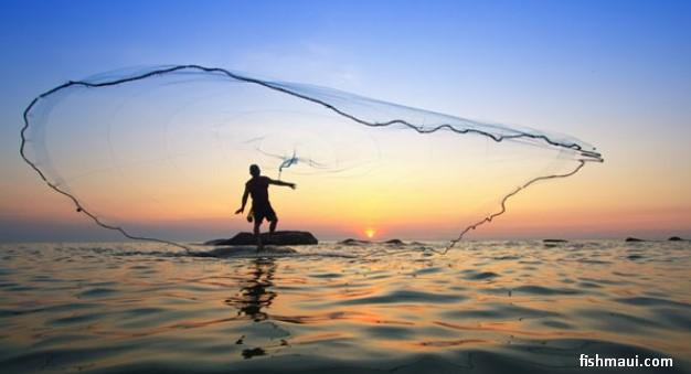 Image result for cast nets into deep water