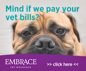nose-to-tail pet insurance coverage with Embrace